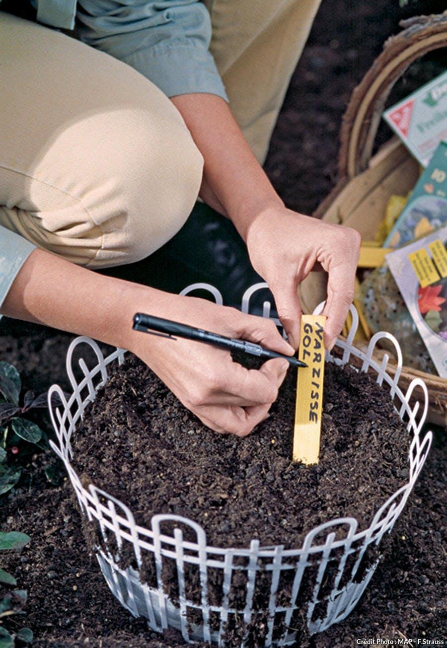 Etiqueter les semis et les plantations