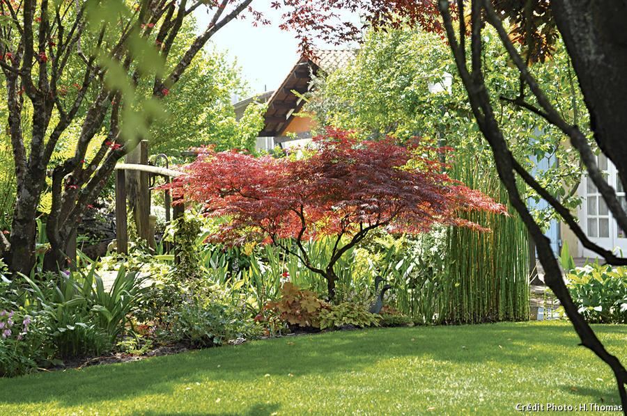 Un jardin de roses et de vivaces dans les Landes - Détente ...