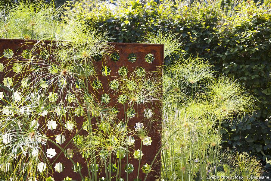 11 idées de brise-vue pour jardin [Plante, haie, bambou ...