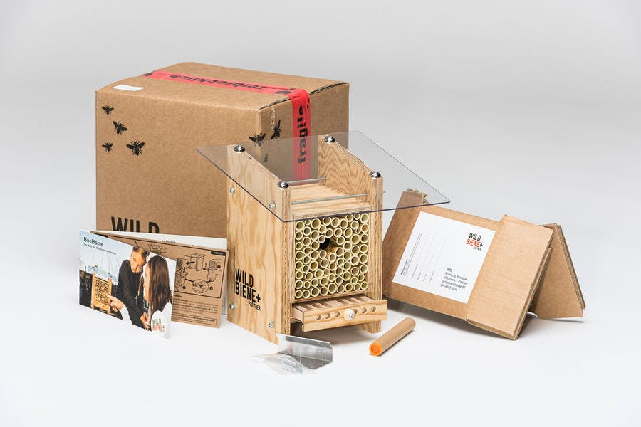 La Beehome et tout le kit pour aider les abeilles sauvages