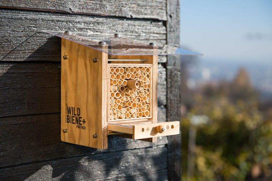 La Beehome, une maison pour les abeilles sauvages à installer dans le jardin