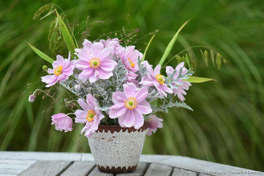 bouquet d'anémone avec des graminées et des cinéraires