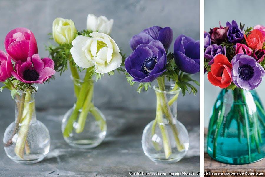 Vase avec anémones