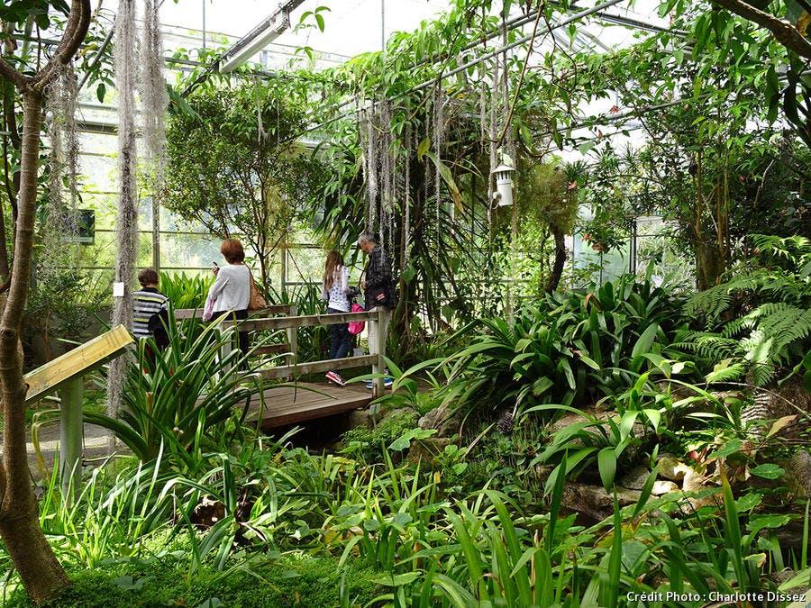 Jardin du conservatoire botanique national - Brest