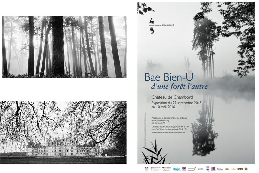 expo CHambord Forêt