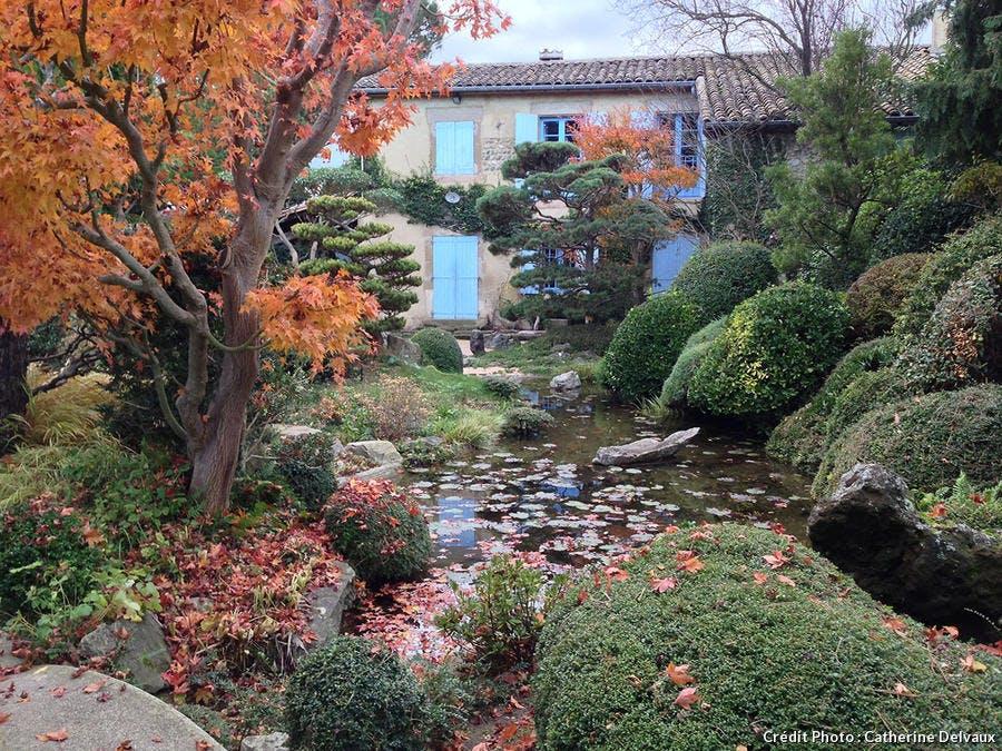 Bassin dans un jardin zen