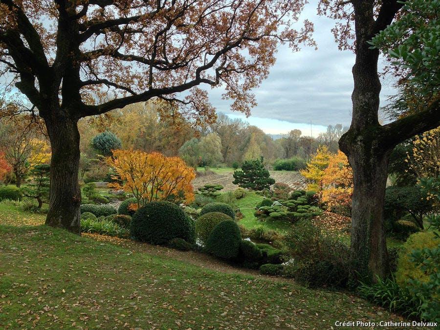 Chemin de promenade dans le jardin zen