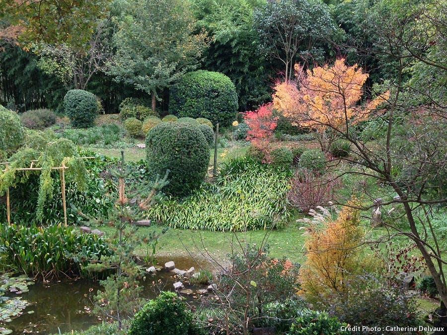 Le jardin zen d'Erik Borja et sa végétation