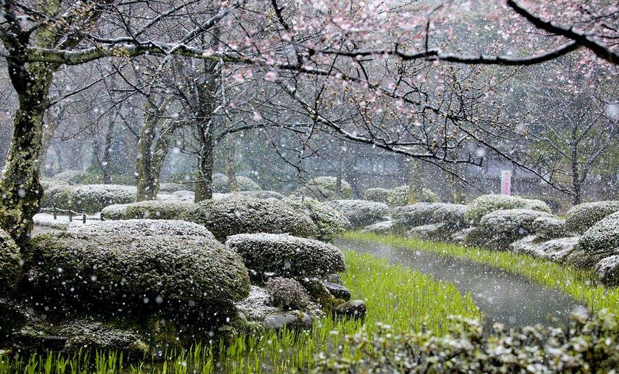 Kenroku-en jardin japonais