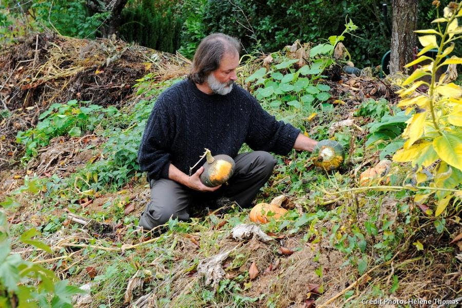 Courges jardin poterie Hillen