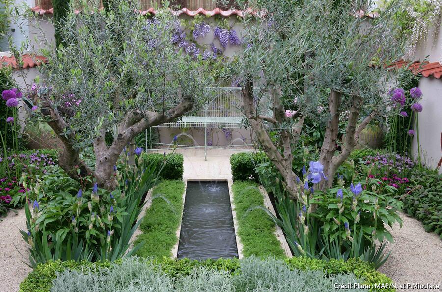 dj_suppl107_jardin_du_reveur.jpg