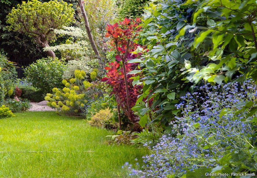 Jardin Opus Paysage