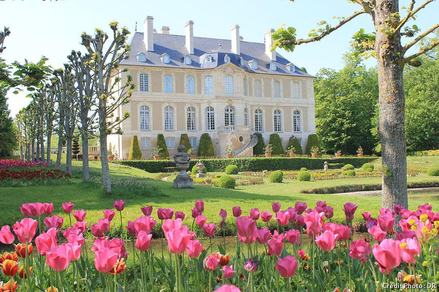 Tulipes chateau Vendeuvre