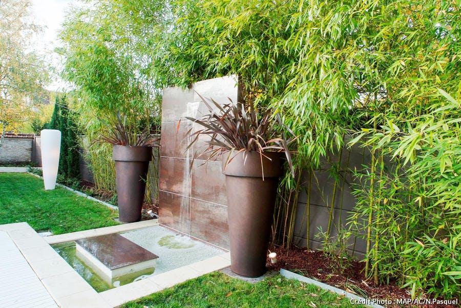 11 id es de brise vue pour jardin plante haie bambou. Black Bedroom Furniture Sets. Home Design Ideas