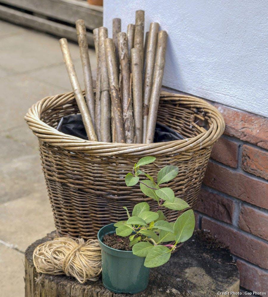 Fabriquer Treillis Bois Pour Plantes Grimpantes un treillage en bois pour plante grimpante [diy - 3 Étapes