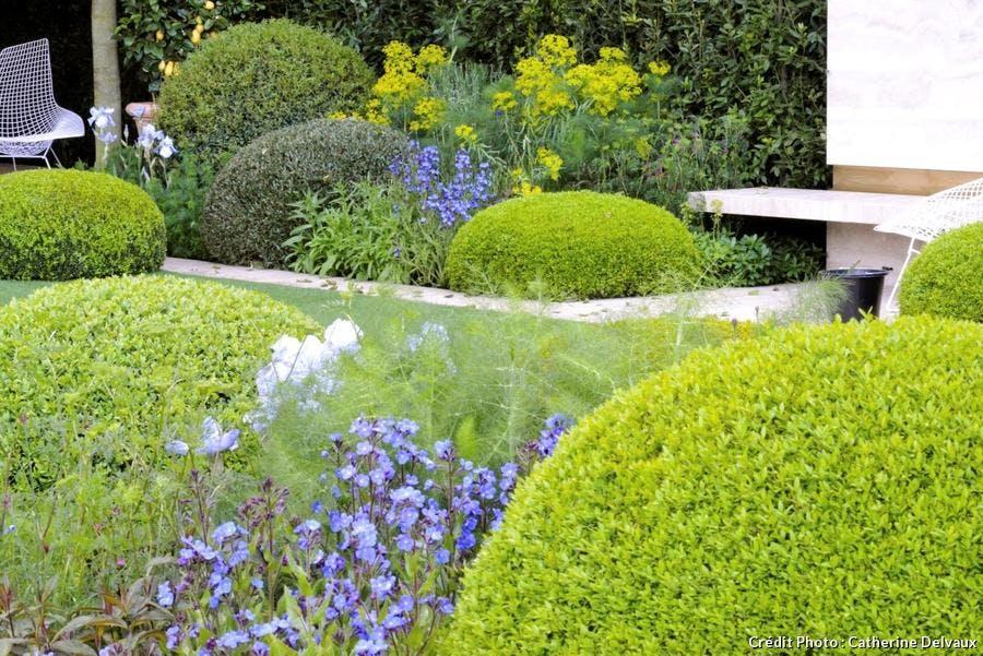 dja-creez-un-jardin-au-parfum-ditalie-buis-suppl119-.jpg