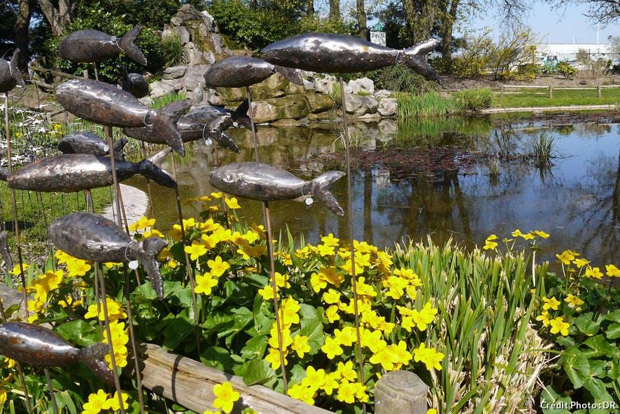 dja-passionnement-jardin.jpg