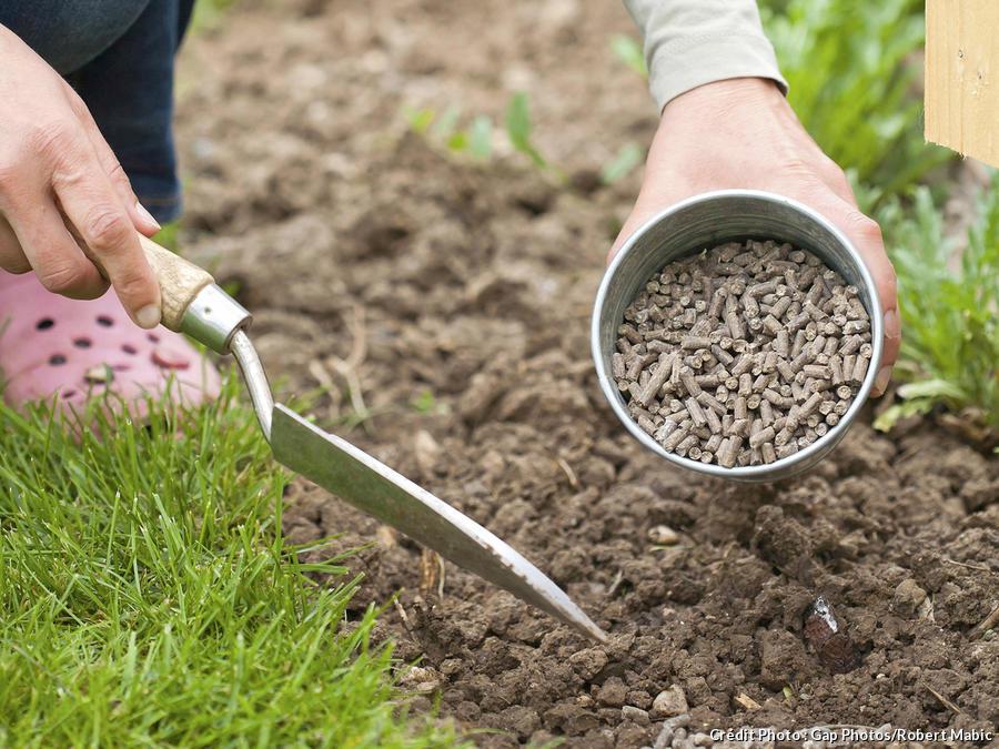 De l'engrais pour les plantations au printemps