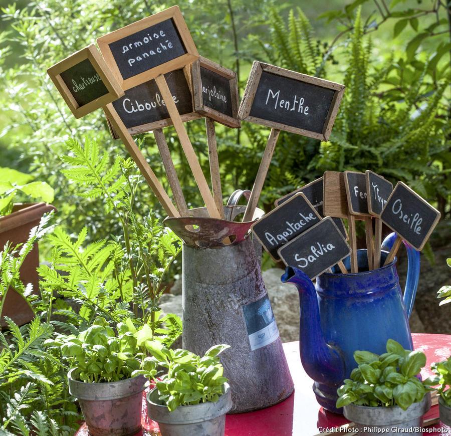 Étiquettes pour fleurs et plantes