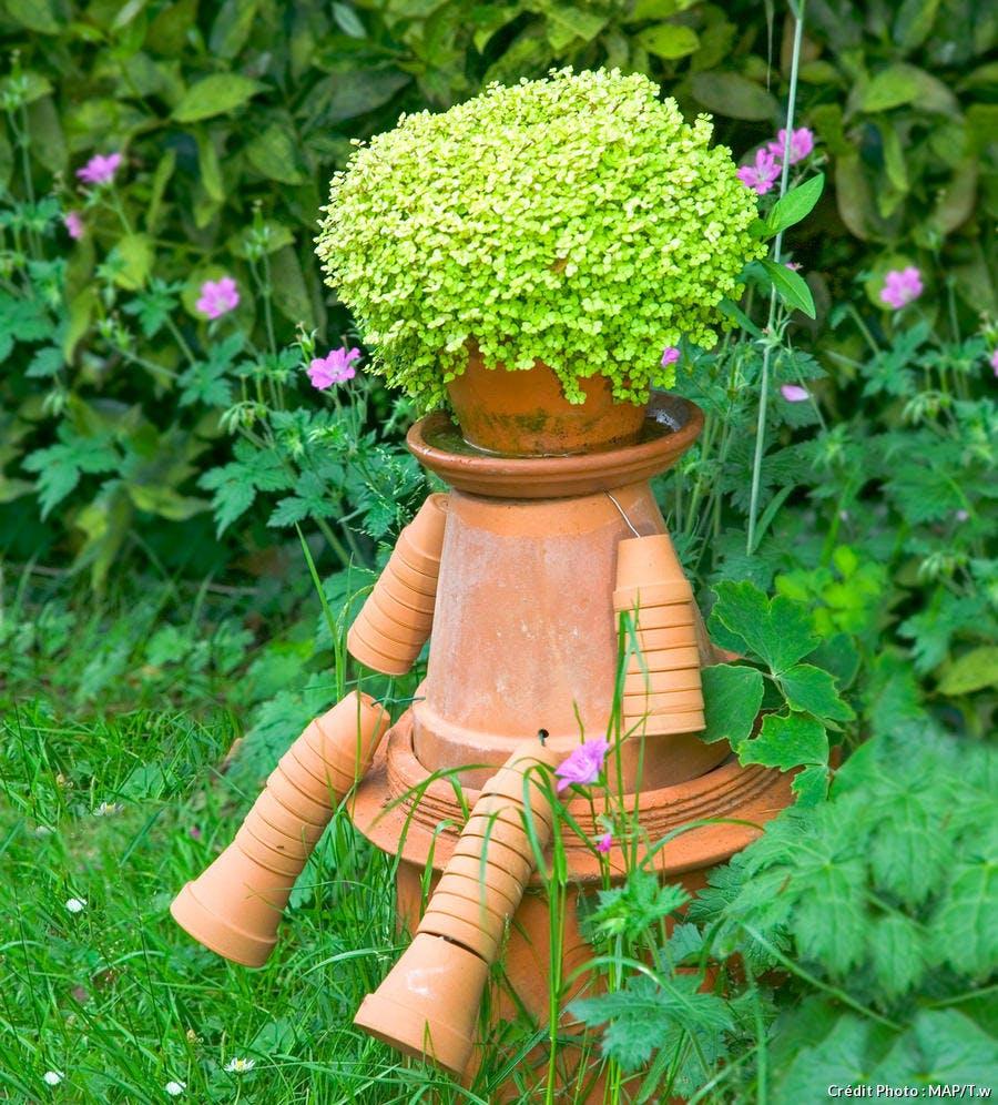 Mousse : 6 plantes coussins pour le jardin | Détente Jardin