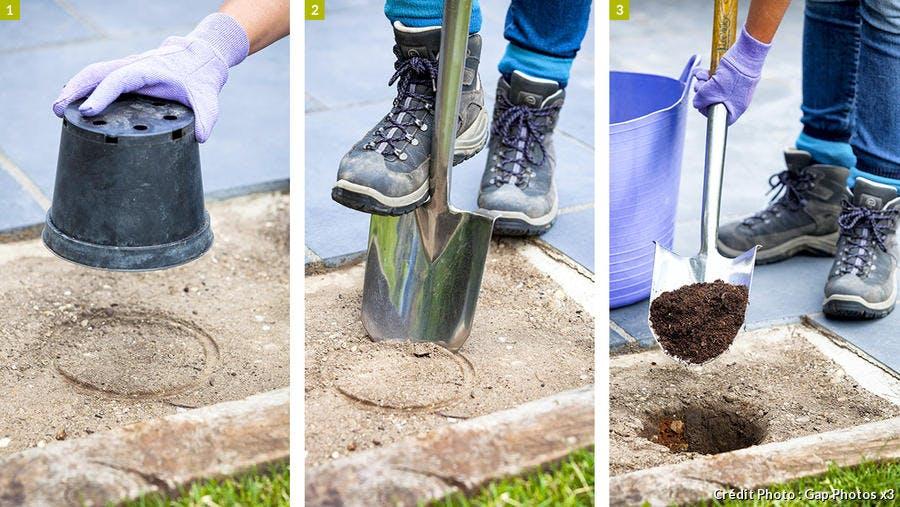 Préparation des trous de plantation pour jardin sur gravier