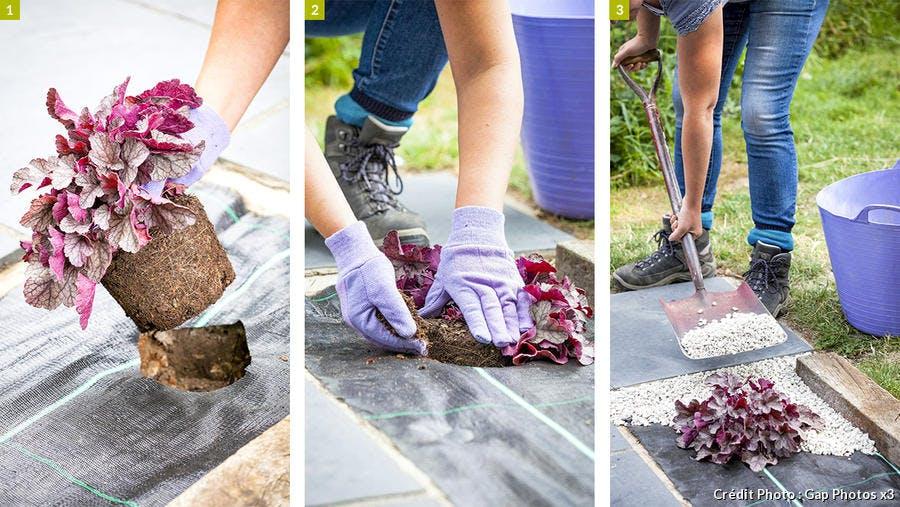 Plantation des mottes dans le jardin en gravillons