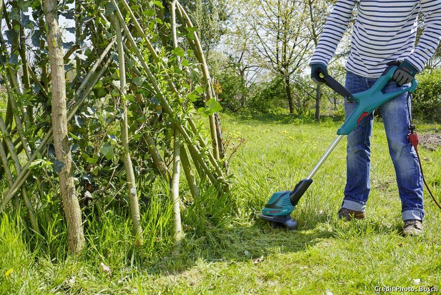 nettoyer l'herbe autour du tipi de jardin en saule