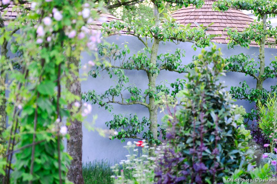 Mur arrangé et fleuri