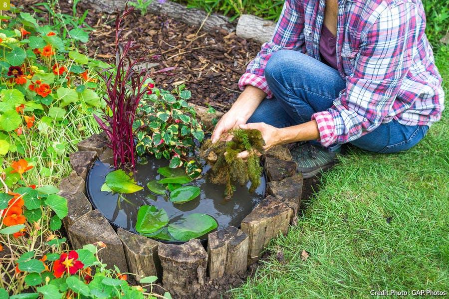 Disposer des plantes flottantes