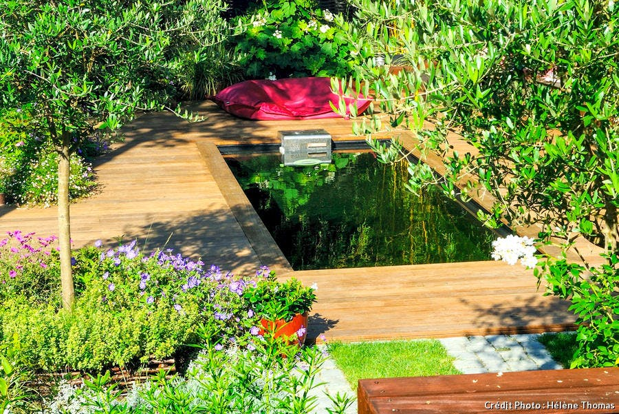 Plan d'eau dans le jardin de ville