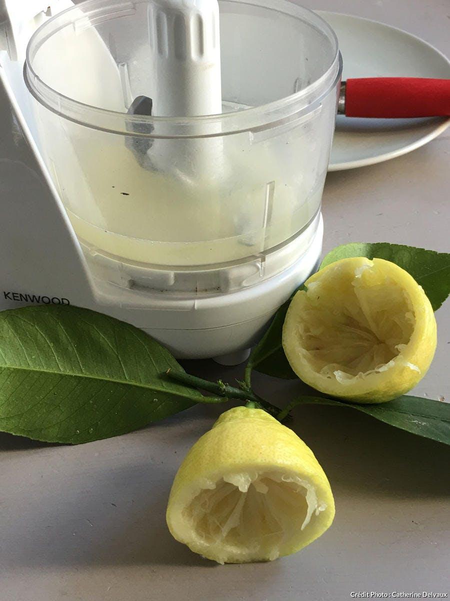 Blender avec jus de citron et aloe vera
