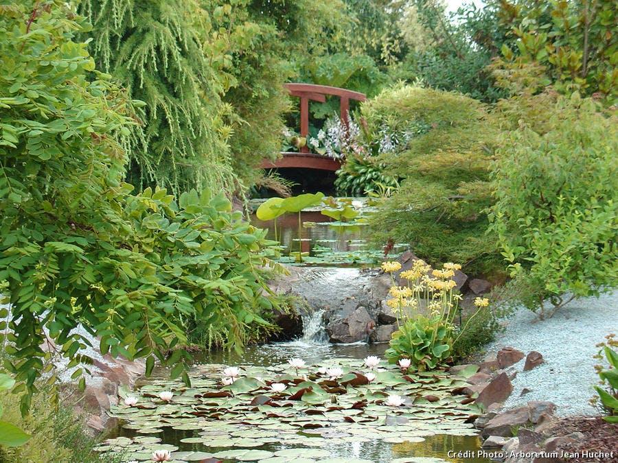 dja_arboretum-huchet-gennes-sur-seiche_jh.jpg