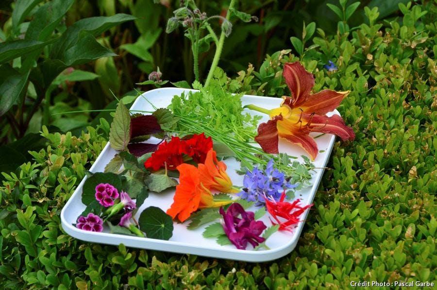 Assiette de fleurs