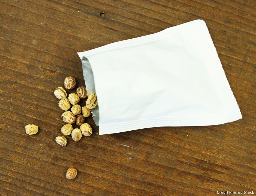 graines de capucines
