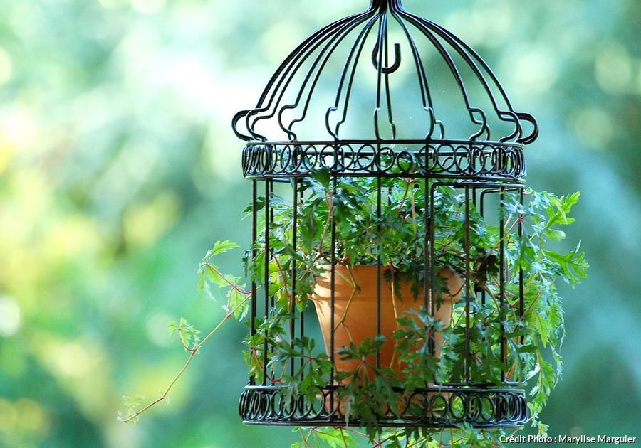 20 idées déco pour le jardin
