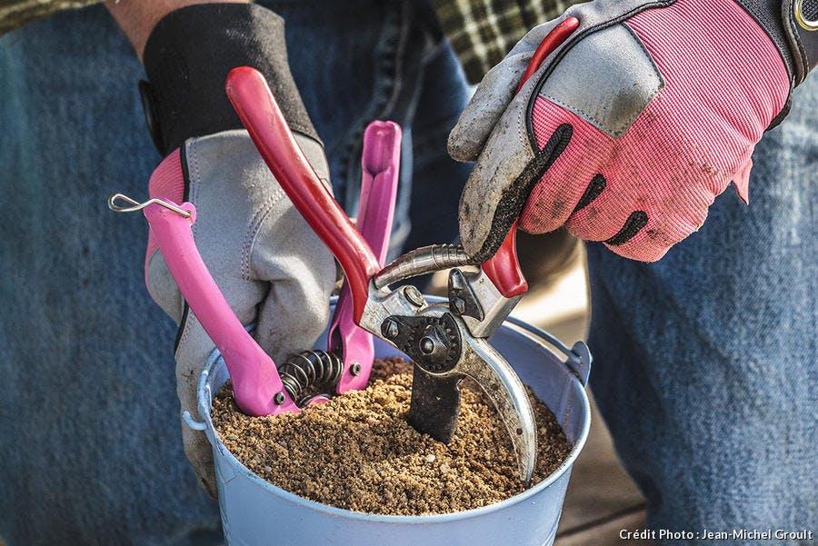 planter un sécateur dans le sable