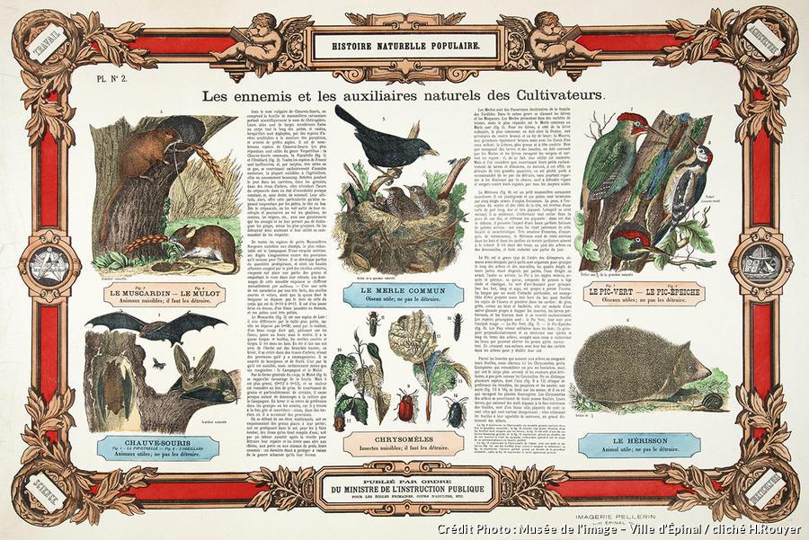 Affiche avec les auxiliaires du jardin au Musée de l'Image d'Épinal.