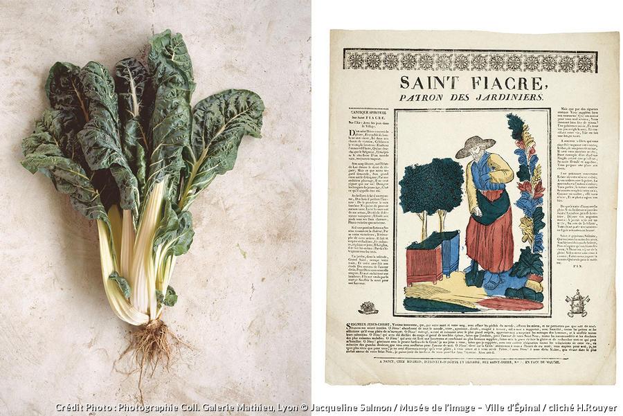 photo de bette et Saint-Fiacre, patron des jardiniers.