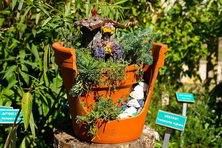 fairy garden dans un pot en terre cuite cassé