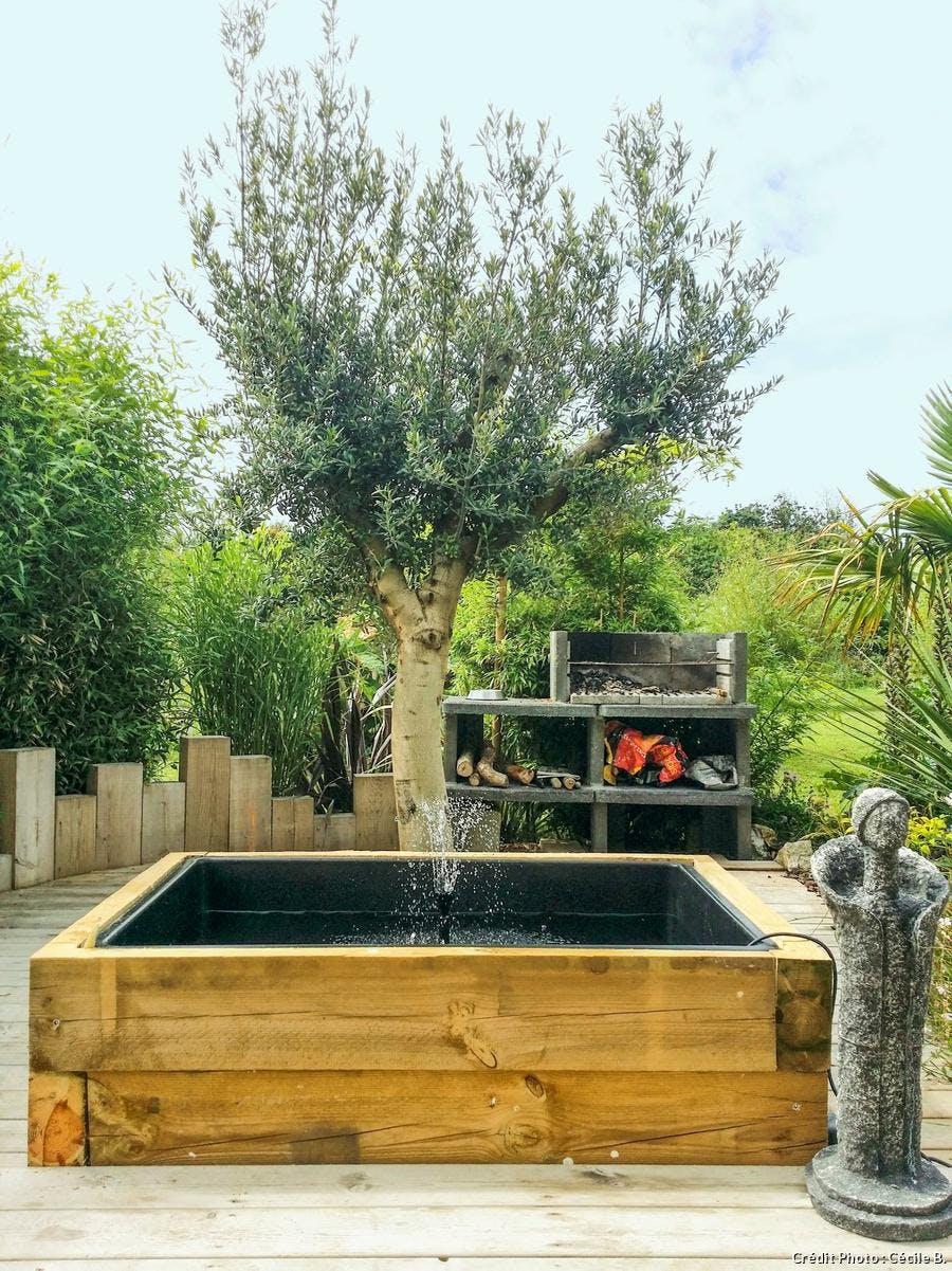 olivier et bassin