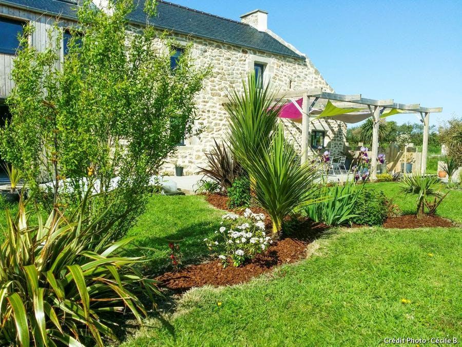 Jardin breton aux allures de jardin exotique I Détente Jardin