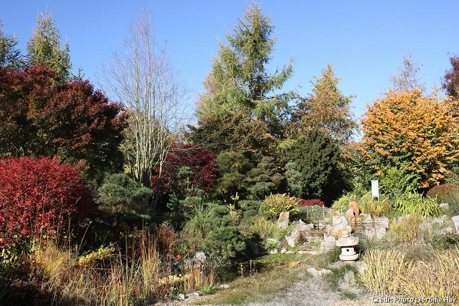 dja_jardin-levant-st-germain-du-pinel_jh.jpg