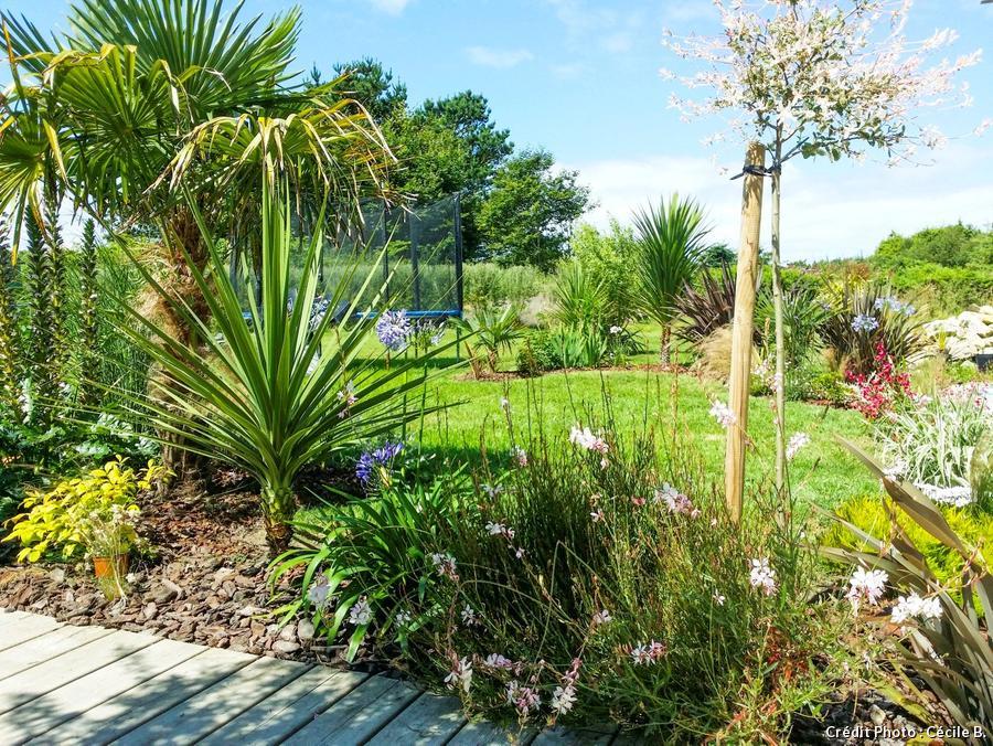 jardin breton avec saule