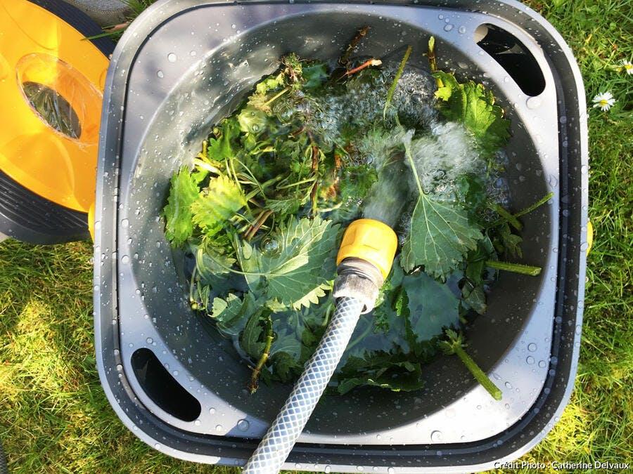 Préparation du purin d'orties avec seau Biomix