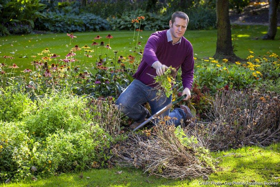 Débroussailler les mauvaises herbes