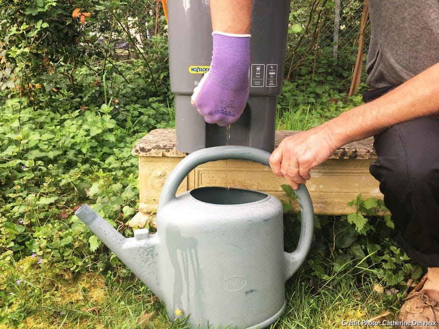 Récupération du purin d'orties