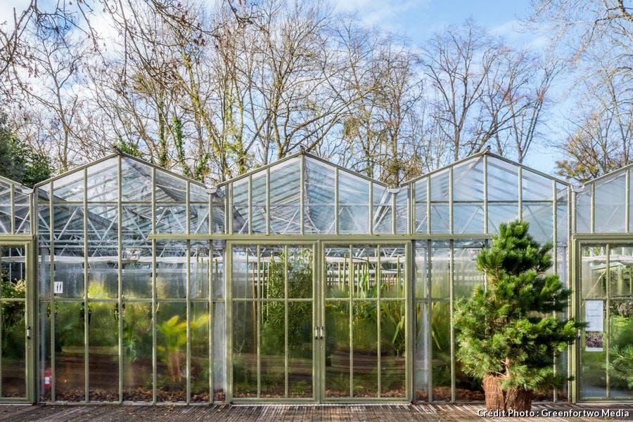 Les serres du restaurant de Chaumont-sur-Loire transformées en jardin d'hiver