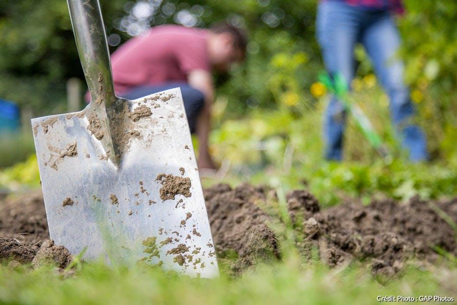Travailler le sol en suivant le calendrier lunaire