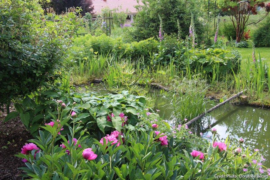 Bassin dans le jardin de Ceffonds