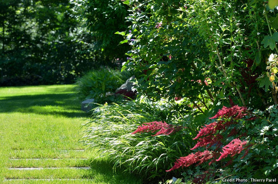 Massif latéral arbustes, vivaces, Henchoz